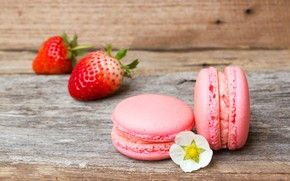 Picture flower, Strawberry, Macaroon