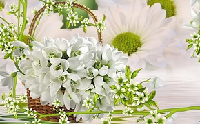 Picture greens, rendering, background, collage, spring, snowdrops, picture, white flowers, a basket of flowers