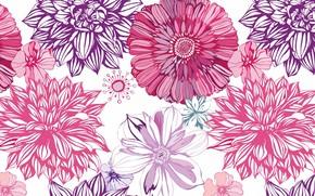 Picture flowers, Wallpaper, vector, petals