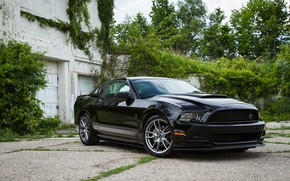 Picture Muscle, Ford Mustang, Tuning, Roush