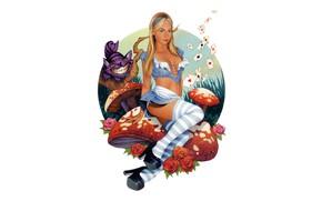 Picture girl, art, Alice, Cheshire cat