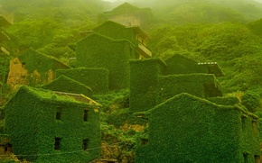 Picture home, slope, China, island Shengshan, abandoned village