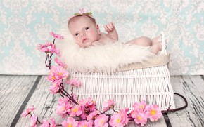 Picture flowers, girl, fur, basket, baby, wood