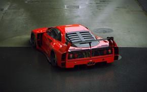 Picture asphalt, car, Luke, back, F40 LM Extreme