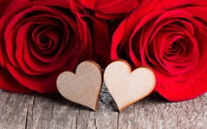 Picture love, flowers, heart, roses, petals, pair, red, love, heart, flowers, romantic, Valentine's Day, petals, roses