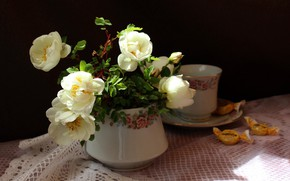 Picture branches, briar, candy, Cup, flowers, napkin, vase