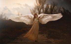 Wallpaper wings, girl, Sometimes Araceli