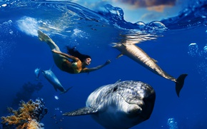 Wallpaper sea, wave, the sky, clouds, fish, bubbles, mermaid, corals, dolphins, underwater world, under water, floats