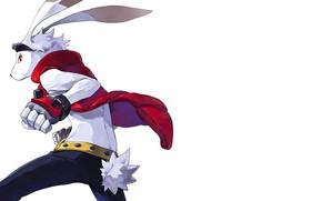 Picture rabbit, anime, animal, hero, japanese, gloves, bakemono, Summer Wars