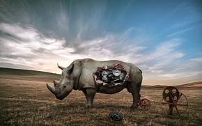 Picture fiction, mechanism, Rhino