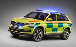 Picture flashers, ambulance, Skoda, Ambulance, medical, Kodiaq
