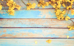 Picture flowers, spring, yellow, vintage, yellow, wood, flowers, spring