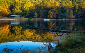 Picture autumn, forest, the sun, trees, lake, Park, shore, USA, Georgia, Lake Trahlyta