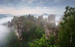 Picture summer, mountains, fog, rocks, spring, morning, Germany, haze