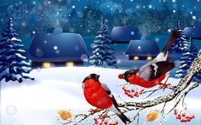 Wallpaper winter, snow, landscape, bullfinches