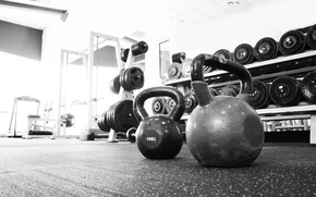Picture gym, distribution, Equipment, Russian dumbbell