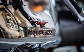 Picture macro, background, Moto guzzi