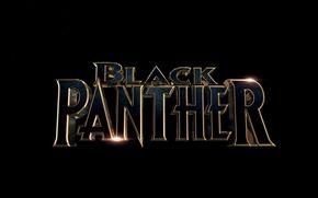 Picture cinema, Marvel, movie, 2018, You Challa, Black Panther, fil, Wakanda