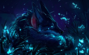 Picture night, nature, wolf, by AlaxendrA