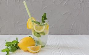 Picture lemon, lemonade, tube, mint