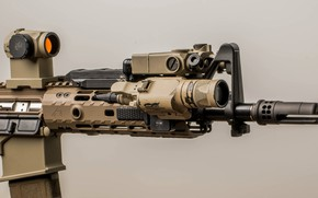 Picture macro, flashlight, optics, assault rifle
