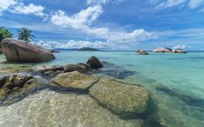Picture nature, tropics, stones, poberegie
