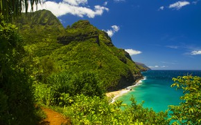 Picture sea, greens, summer, mountains, shore