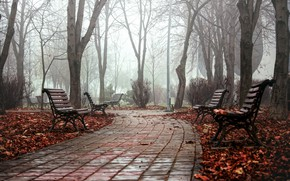 Picture autumn, the city, fog, Park, bench