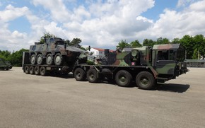 Picture weapon, truck, Boxer, tank, Elefant, armored, stand, military vehicle, armored vehicle, armed forces, military power, …