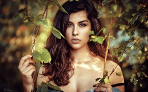 Picture leaves, branches, portrait, makeup, garden, dress, hairstyle, brown hair, beauty, bokeh, Daria Nabi, Paul Pulak