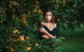 Wallpaper Nicka, autumn, branches, photographer, summer, Dmitrij Butvilovskij, girl, Linden, tree, Nick Kolosov, look