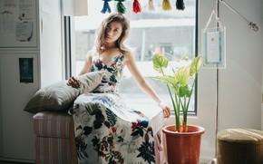 Picture look, dress, window, Oriental girl