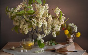 Picture bouquet, spring, still life, composition, cherry