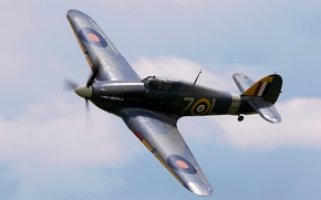 Wallpaper British, Sea Hurricane, single, fighter