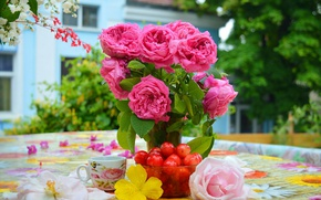 Picture Cup, Cherry, Pink roses