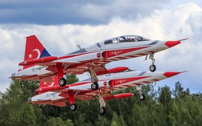 Picture pair, the rise, aircraft, Northrop F-5