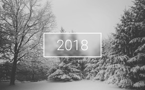 Picture wallpaper, white, christmas, new year, trees, winter, snow, minimalistic, 2018