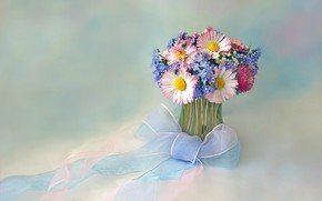 Picture flowers, tape, bouquet, bow, forget-me-nots, vase, Daisy