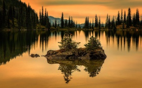 Picture Sunset, Water, Nature, Reflection, Mountains, Grass, Lake, Trees, Forest, Branches
