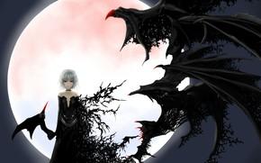 Picture night, bat, black dress, red eyes, art, transformation, vampire, black wings, Touhou Project, Remilia Scarlet, …