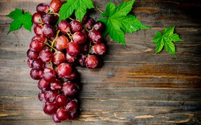 Picture leaves, red, berries, Board, grapes