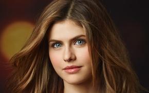Picture look, close-up, face, background, portrait, makeup, actress, hairstyle, brown hair, bokeh, Alexandra Daddario, Alexandra Daddario