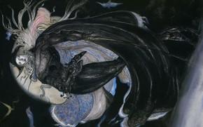 Picture flight, night, sword, hat, cloak, the full moon, art, Yoshi Want Amano, Vampire Hunter D, …