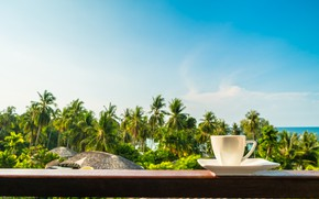 Picture sea, beach, summer, palm trees, stay, shore, coffee, morning, Cup, balcony, summer, beach, vacation, sea, …