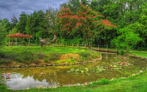 Picture greens, grass, trees, flowers, birds, design, pond, Park, stones, hdr, gazebo, the bushes, chicken, composition