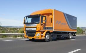 Picture the sky, landscape, orange, track, the fence, van, DAF, DAF, Silent, platform, 4x2, Euro6, DAF …