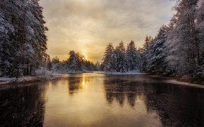 Picture winter, forest, river, Sweden, Arvika