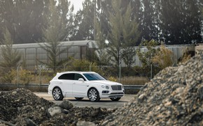 Picture Bentley, White, VAG, Bentayga