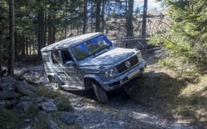 Picture forest, trees, stones, Mercedes-Benz, disguise, test, 2018, G-Class