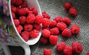 Picture berries, raspberry, still life, cottage